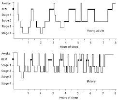 Dog Sleep Pattern Classy Sleep Problems In The Elderly American Family Physician