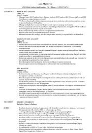 Seo Resume Examples SEO Analyst Resume Samples Velvet Jobs 20