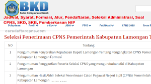 Download in pdf and print easily at home or office yearly. Pengumuman Hasil Skb Cpns Kabupaten Lamongan Formasi 2019