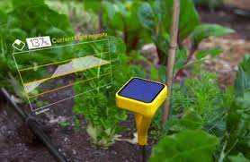 The Burpee Garden Coach is just one of the new tools gardeners can use to  connect