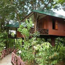 House Hotel In ThailandTreehouse In Thailand
