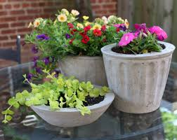 Over on eHow: DIY Cement Flower Pots
