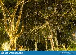Easy Way Hang Christmas Lights Outdoor Blurred Decorative Outdoor String Lights Hanging On Tree In