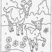 Small Picture ANIMAL Color by Number coloring pages Coloring pages Printable