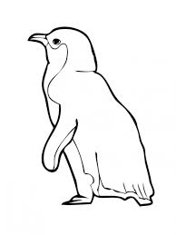 Coloring Pages For Kids Penguin Animals   Animal Coloring pages of ...