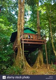 8 Amazing Treehouse Stays In South AfricaTreehouse Accommodation