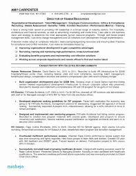 Rental Resume Example 40 Best Resume Examples For Nurses Pics Resume Classy Rental Resume