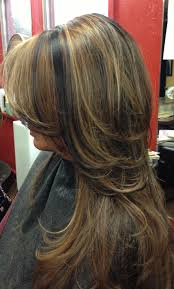 Dark Hair With Caramel Highlights Kasey