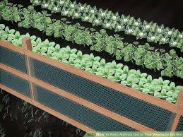 how to keep deer out of vegetable garden. fencing to keep deer out of garden image titled animals your vegetable . how