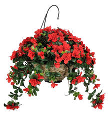 Red Flower Hanging Basket