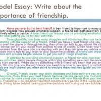 Essay On Tolerance Essay On Tolerance And Togetherness Mistyhamel