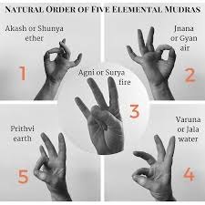 Hand Mudras Chart The Secret Life Of The Body Mudras Day 7 Meditation For
