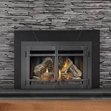 Contemporary Living Room Style With Napoleon Natural Gas Powered Fireplace  Insert, And Square Prairie Pattern Shape Door Design. Pinterest