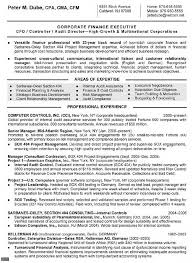 Resume Templates For Senior Managers Professional Resume Templates