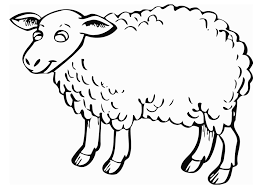 Small Picture Perfect Sheep Coloring Page 50 In Seasonal Colouring Pages with