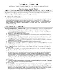 Consultant Resume Example For A Senior Manager Business Management
