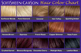 Surya Brasil Color Chart Softsheen Carson Hair Color Chart