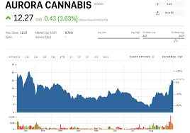 Acbff Stock Quote Fascinating Canadian Marijuana Producer Aurora Cannabis Posts A Surprise Profit