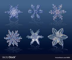 real snowflake. Modren Snowflake Real Snowflakes Vector Image And Snowflake