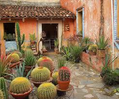 Small Picture Best 25 Outdoor cactus garden ideas on Pinterest Cactus garden