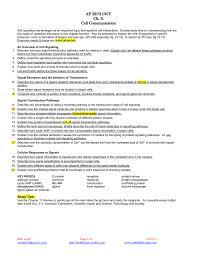 s studylib net store data b
