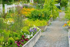 a garden from scratch