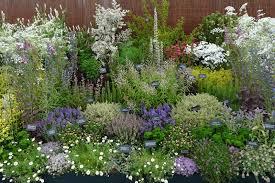Small Picture Best 25 Medicinal Herbal Garden Design Medicinal Herb Garden