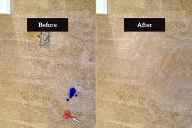 Ink Stains Caused By Dog, Carpet Repairs Sydney - Lindette Carpet Services