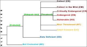 Unit 2 Conservation Status Chart Chart Diagram Line Chart