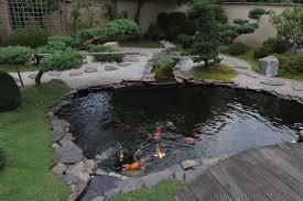 garden pond liners. Decorative Pond Liners Koi Fish Tips Sweeney Feeders Garden