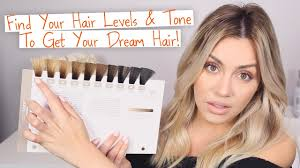 find your hair level tone to get your dream hair