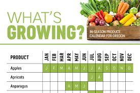 Washington State Seasonal Fruit Chart Whats In Season Oregon Produce Calendar Infographic