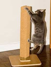 cost to make a cat scratching post 2020