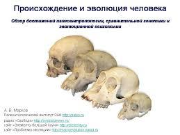 Проблемы Эволюции Обзор достижений палеоантропологии сравнительной генетики и эволюционной психологии