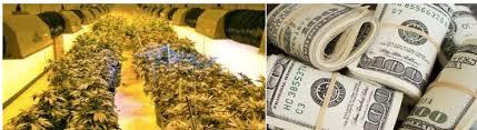 Medical Marijuana Vending Machine Stock Delectable Marijuana Investment Companies Medical Marijuana Stocks To Buy Now