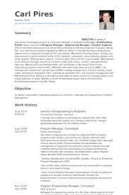 Examples Of Engineering Resumes Impressive Director Engineering Resumes Funfpandroidco
