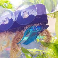 Self Cleaning Fish Tank Garden Indiegogo Aquaponics Crowdfunding Campaign Aquarium Garden Diy