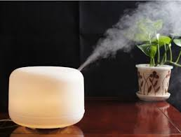 ... Best Humidifier Reviews