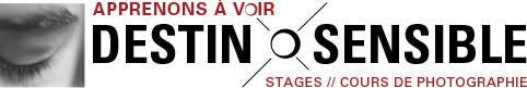 """Résultat de recherche d'images pour """"logo DESTIN SENSIBLE"""""""