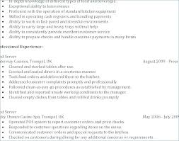Work Experience Examples For Resume Entry Level Resume No Experience