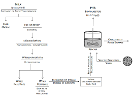 Whey Processing Flow Chart Whey Lactose As A Raw Material For Microbial Production Of