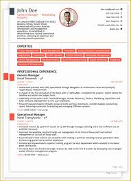 Template Professional Cv Free Download Curriculum Vitae