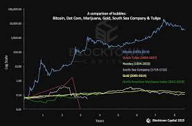 A Chart On Bubbles Bitcoin Tulips Dot Com South Sea