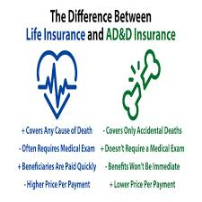 accidental life insurance quotes 100 top quote life insurance 100 quote car insurance geico