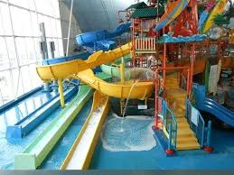 indoor pool house with slide. Slides In Houses Indoor Intermediate Off Of The Tree House Water Pool With Slide