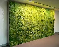 Small Picture 125 best Jardn vertical images on Pinterest Vertical gardens