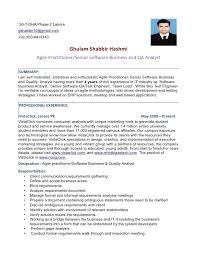 Design Automation Engineer Sample Resume    Sr  Qa Software Test