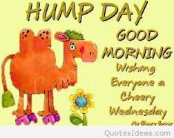 Good Wednesday Morning Quotes Best of Funny Happy Wednesday Happy Hump Day Good Morning