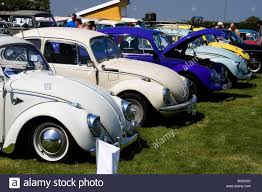 VW Beetle line up at a classic car show Stock Photo: 17582052 - Alamy