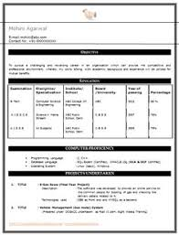 Over 10000 Cv And Resume Samples With Free Download: Computer ...